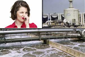 Stp Exhaust Odor Destruction Ozone Generator System